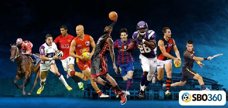 www sbobet com soccer